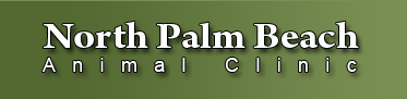 North Palm Beach Animal Clinic Located at 719 Northlake Boulevard, we serve Lake Park, Palm Beach Gardens, Singer Island and the Village of North Palm Beach Florida